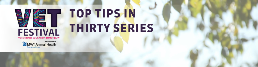 Top Tips Series picture