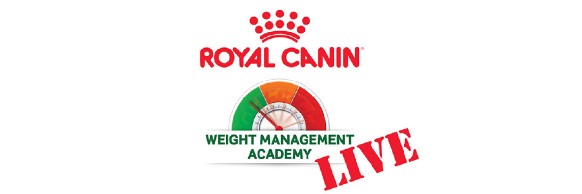 ROYAL CANIN® Weight Management Academy LIVE picture